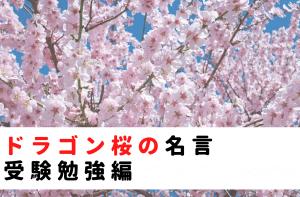 ドラゴン桜の名言|受験勉強編